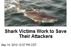Shark Victims Work to Save Their Attackers