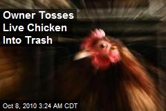 Live Chicken Tossed Out With the Trash