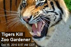 Tigers Kill Zoo Gardener