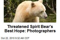 Threatened Spirit Bear's Best Hope: Photographers