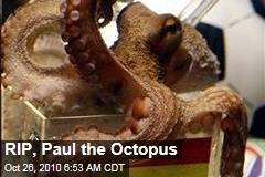 RIP, Paul the Octopus