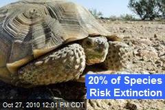 20% of Species Risk Extinction