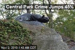 Central Park Crime Jumps 45%