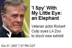 'I Spy' With My Little Eye: an Elephant