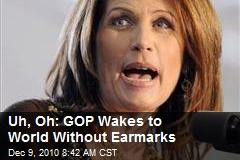 Uh, Oh: GOP Wakes to World Without Earmarks