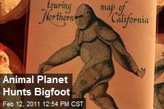 Animal Planet Hunts Bigfoot