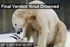 Final Verdict: Knut Drowned