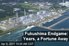 Fukushima Endgame: Years, a Fortune Away