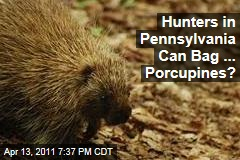 Pennsylvania Allows Hunters to Kill Porcupines