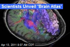 Scientists Unveil 'Brain Atlas'