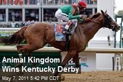 Animal Kingdom Wins Kentucky Derby