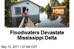 Floodwaters Devastate Mississippi Delta