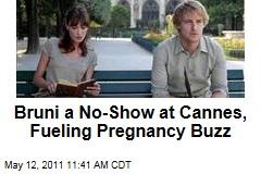 Carla Bruni's Cannes Film Festival No-Show Fuels Pregnancy Buzz