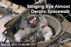 Spacewalking Astronaut Andrew Feustel Gets 'Something' in Eye