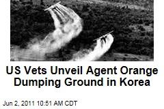 US Vets Unveil Agent Orange Dumping Ground in Korea