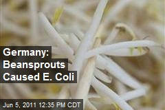 Germany: Beansprouts Caused E. Coli