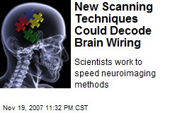 New Scanning Techniques Could Decode Brain Wiring