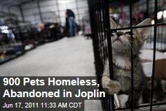 Joplin Tornado Leaves Pets Homeless: 900 Animals Wait at Humane Society.