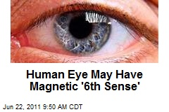 Human Eye May Have Magnetic '6th Sense'