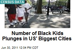 Number of Black Kids Plunges in US' Biggest Cities