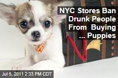 West Village Pet Shops Ban Drunk Puppy Buying