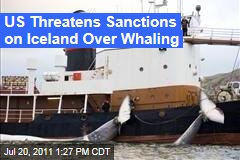 US Threatens Iceland With Sanctions Over Whaling