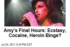 Amy Winehouse's Last Days, Final Hours: Ecstasy, Cocaine, Heroin, Alcohol Binge, Plus Heartbreak Over Split, Sources Say