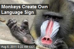 Monkeys Create Own Language Sign