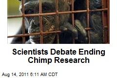 Scientists Debate Ending Chimp Research