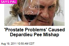 Gerard Depardieu Peeing-on-Plane Incident Caused by 'Prostate Problems,' Says Pal
