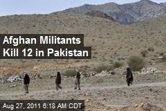 Afghan Militants Kill 12 in Pakistan