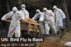 UN: Bird Flu Is Back