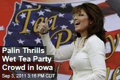 Palin Backs Republican Slate at Tea Party Rally in Des Moines, Iowa