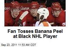 Fan Tosses Banana Peel at Black NHL Player