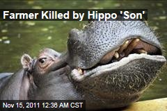 South African Farmer Marius Els Killed by Pet Hippo