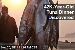 Ancient Tuna Dinner Discovered in East Timor