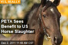 PETA Sees Benefit to US Horse Slaughter