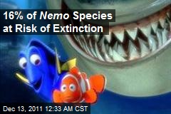 16% of Nemo Species at Risk