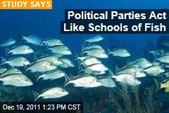 Democrats and Republicans Behave Like Schools of Fish