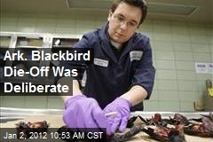 Ark. Blackbird Die-Off Was Deliberate