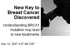 New Key to Breast Cancer Discovered