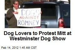 Dogs Against Romney Form 'Super Pack'