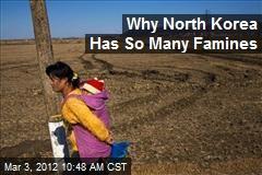 Why North Korea Has So Many Famines