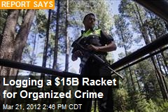 Logging a $15B Racket for Organized Crime