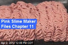 Pink Slime Maker Files Chapter 11