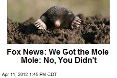 Fox News: We've Found Gawker's Mole