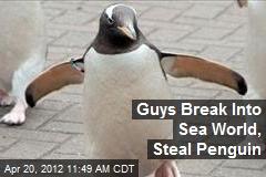 Guys Break Into Sea World, Steal Penguin