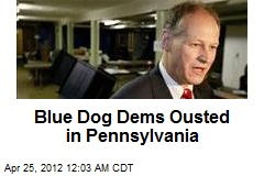 Blue Dog Dems Ousted in Pennsylvania