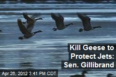 Kill Geese to Protect Jets: Sen. Gillibrand