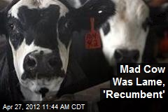Mad Cow Was Lame, 'Recumbent'